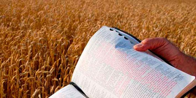 mes-da-biblia