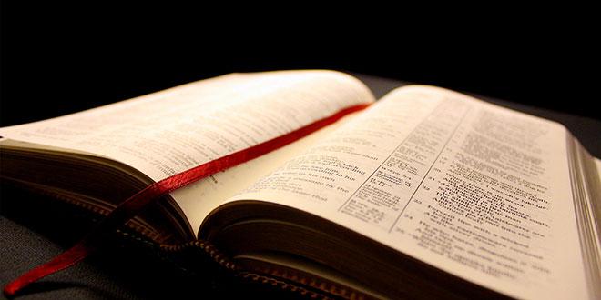 biblia-partilha-palavra